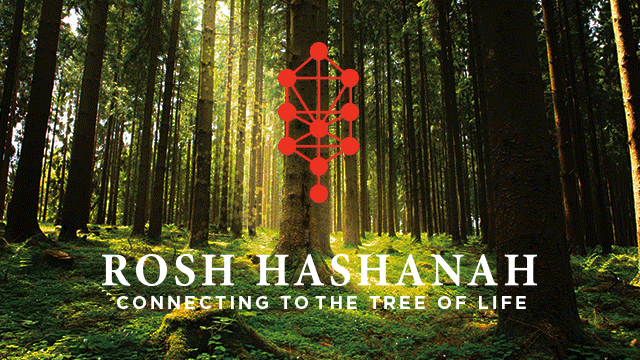 Rosh Hashanah: Connecting to the Tree of Life - 2017