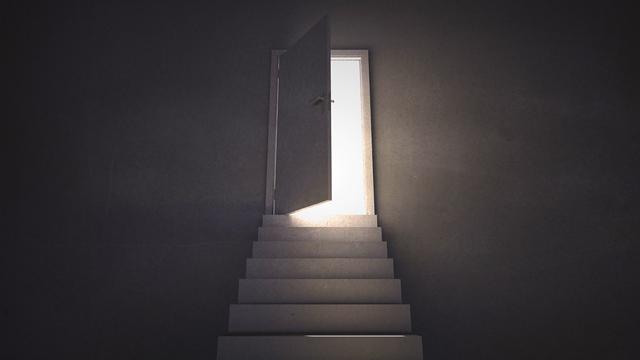 Elegir la conciencia de Luz