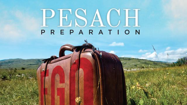 Pesach Preparation
